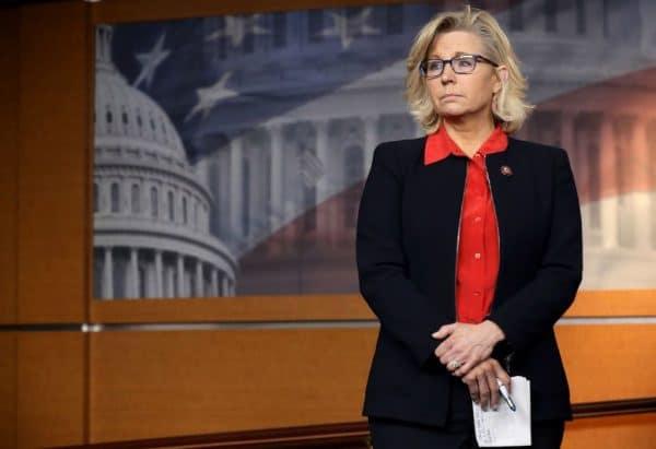 Liz Cheney Net Worth
